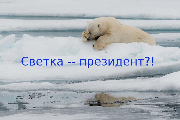 Медведь_Тихановская.png