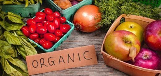 экология продукты